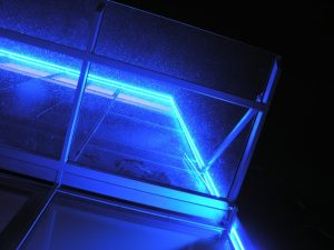 LED insect